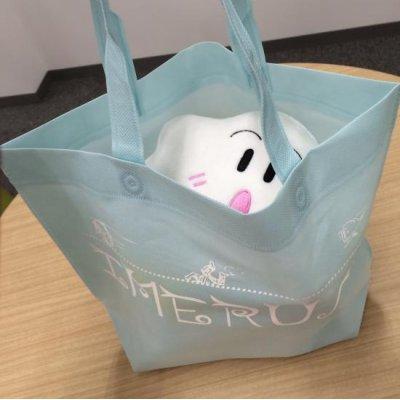 Photo4: Stuffed Imerun with original designed bag