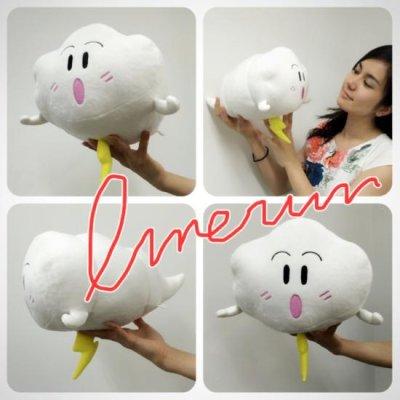 Photo2: Stuffed Imerun with original designed bag