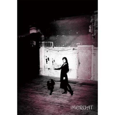 Photo1: DVD - IMERUAT